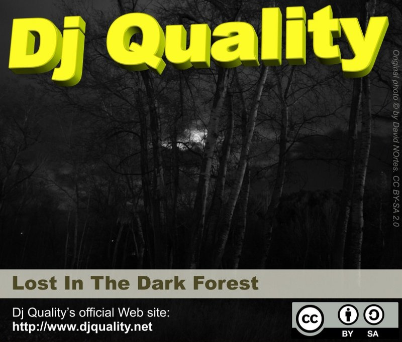Dj Quality - Lost In The Dark Forest - Front Cover